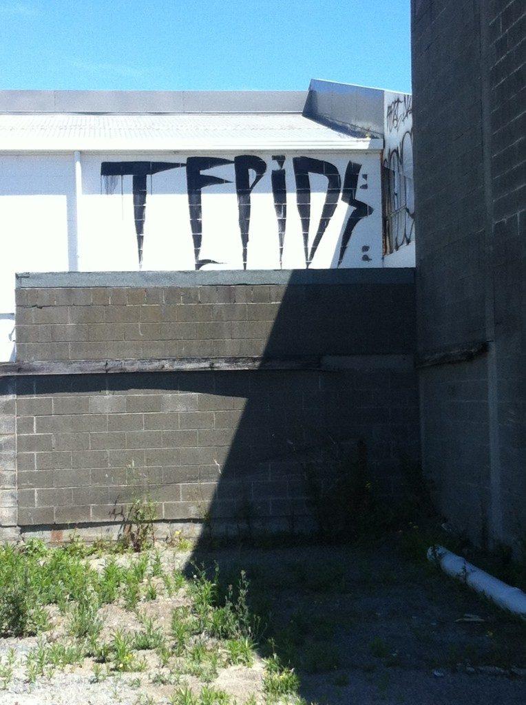 TEPID roller tag, central Christchurch, c.2012